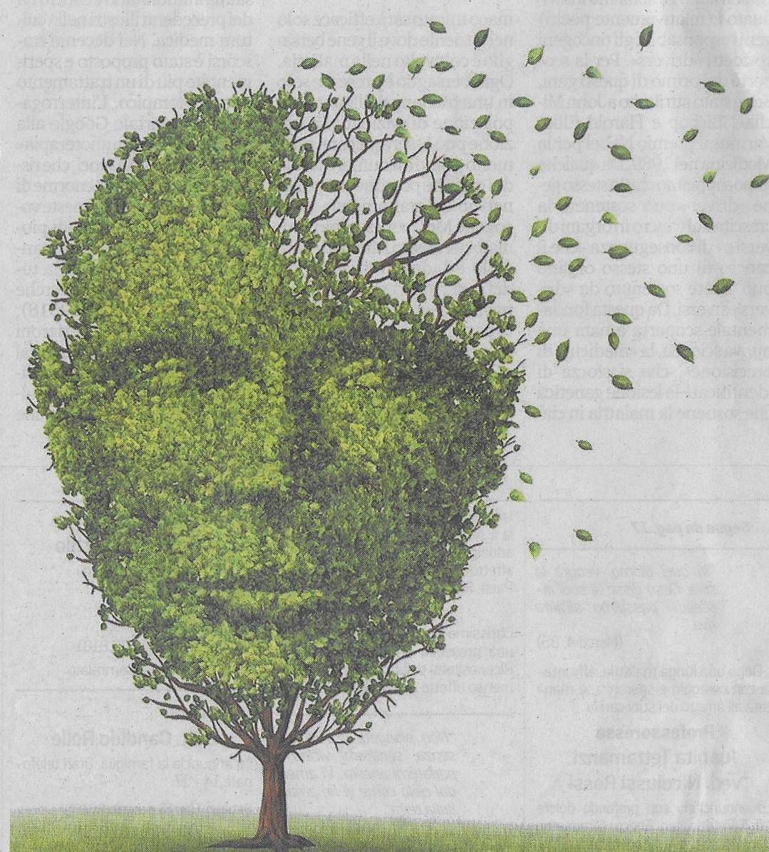 L'albero e l'uomo